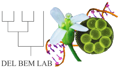 Del Bem Lab